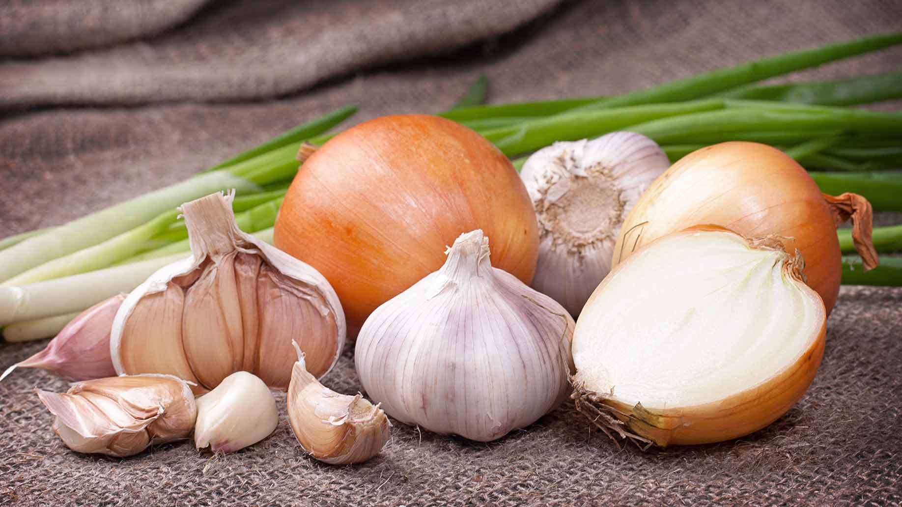 garlic cloves white sliced onions scallions