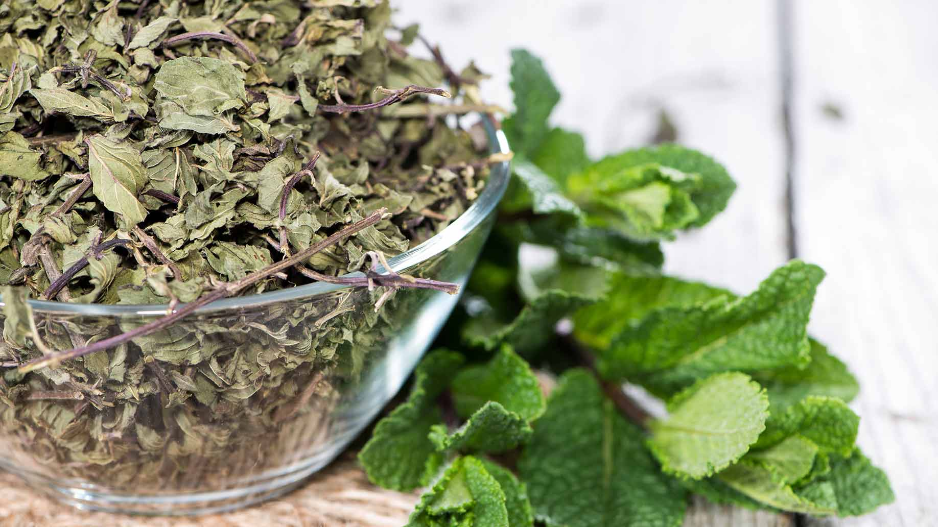 lemon balm with fresh and dried leaves