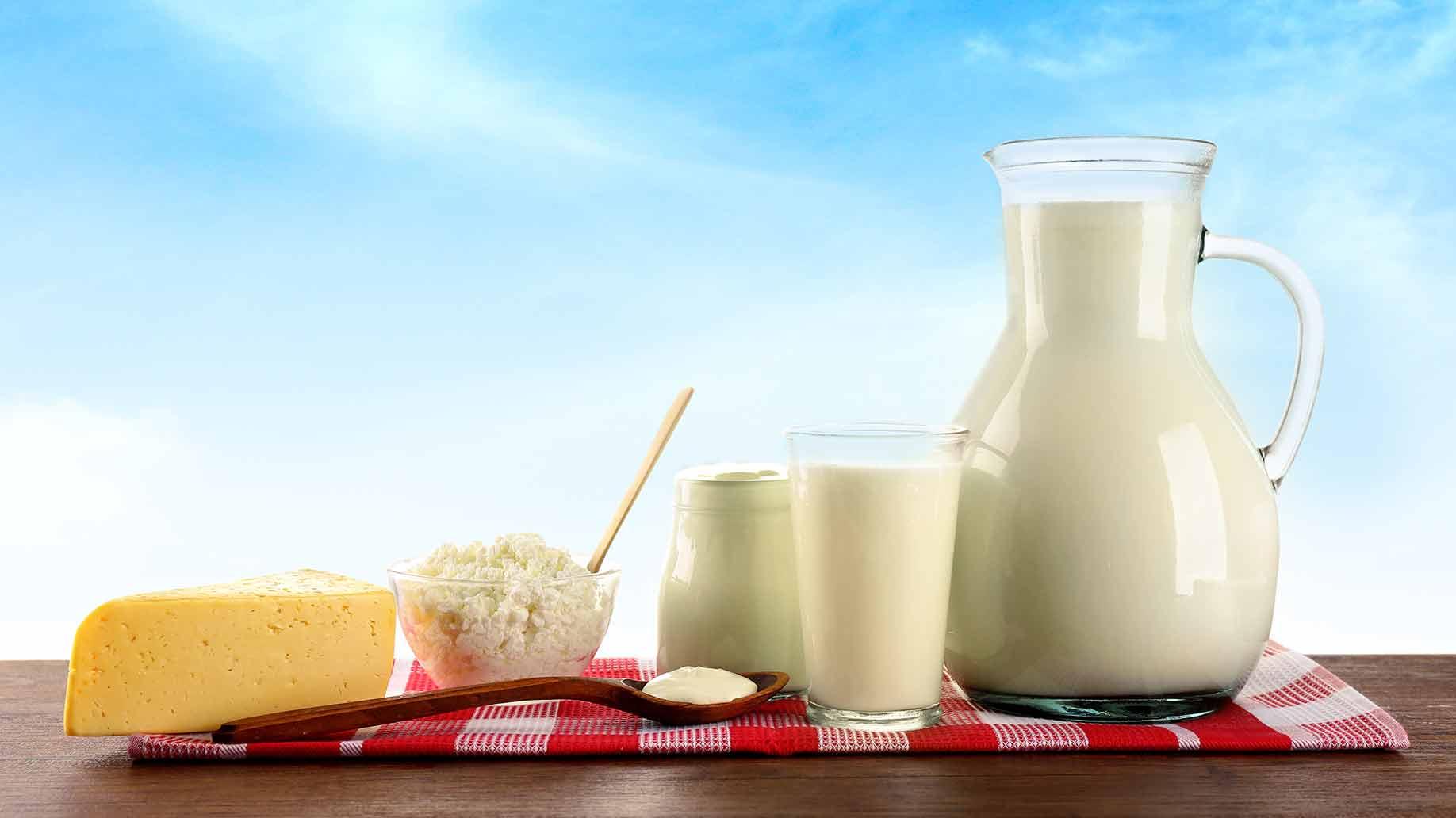 calcium milk cheese cottage cheese yogurt fresh dairy
