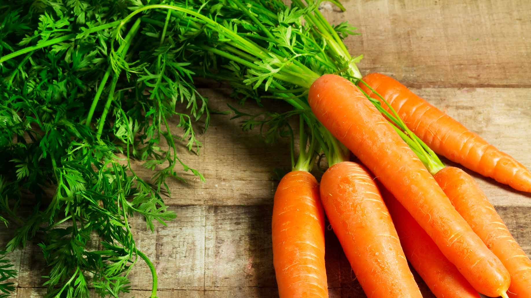 fresh carrots organic stems root for liver cleanse