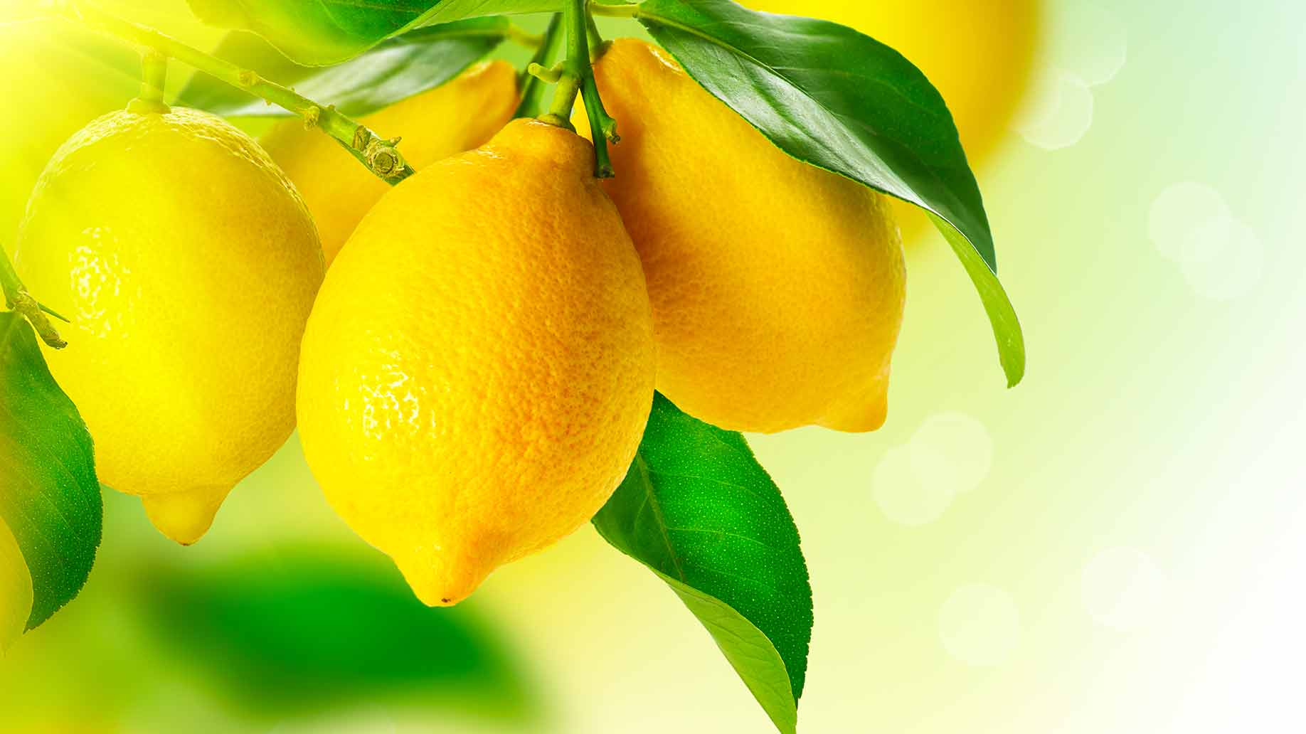 fresh lemons citrus fruits acid vitamin c for bad breath halitosis how to get rid of naturally
