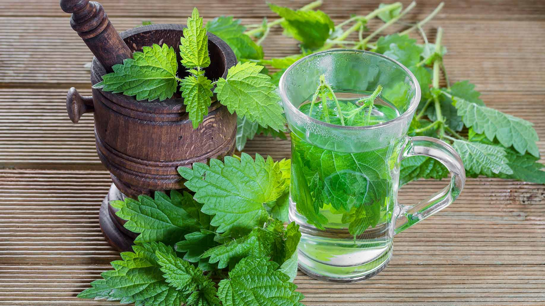 fresh peppermint parsley herbs for bad breath halitosis how to get rid of naturally