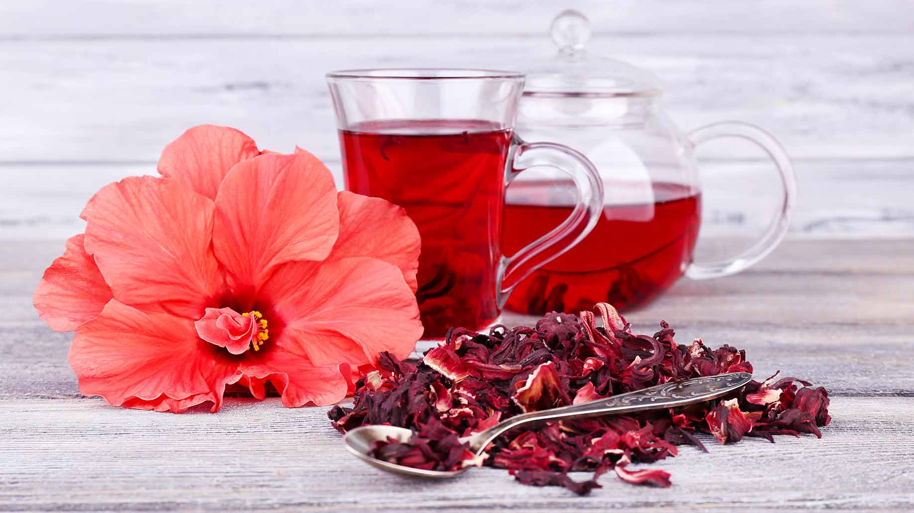 hibiscus tea flower natural herbal remedy high blood pressure hypertension