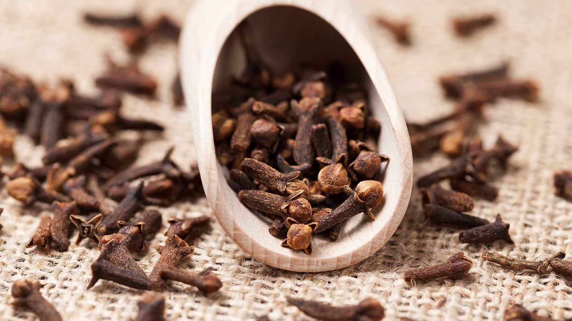 clove-essential-oil-antimicrobial-antioxidant-anti-fungal