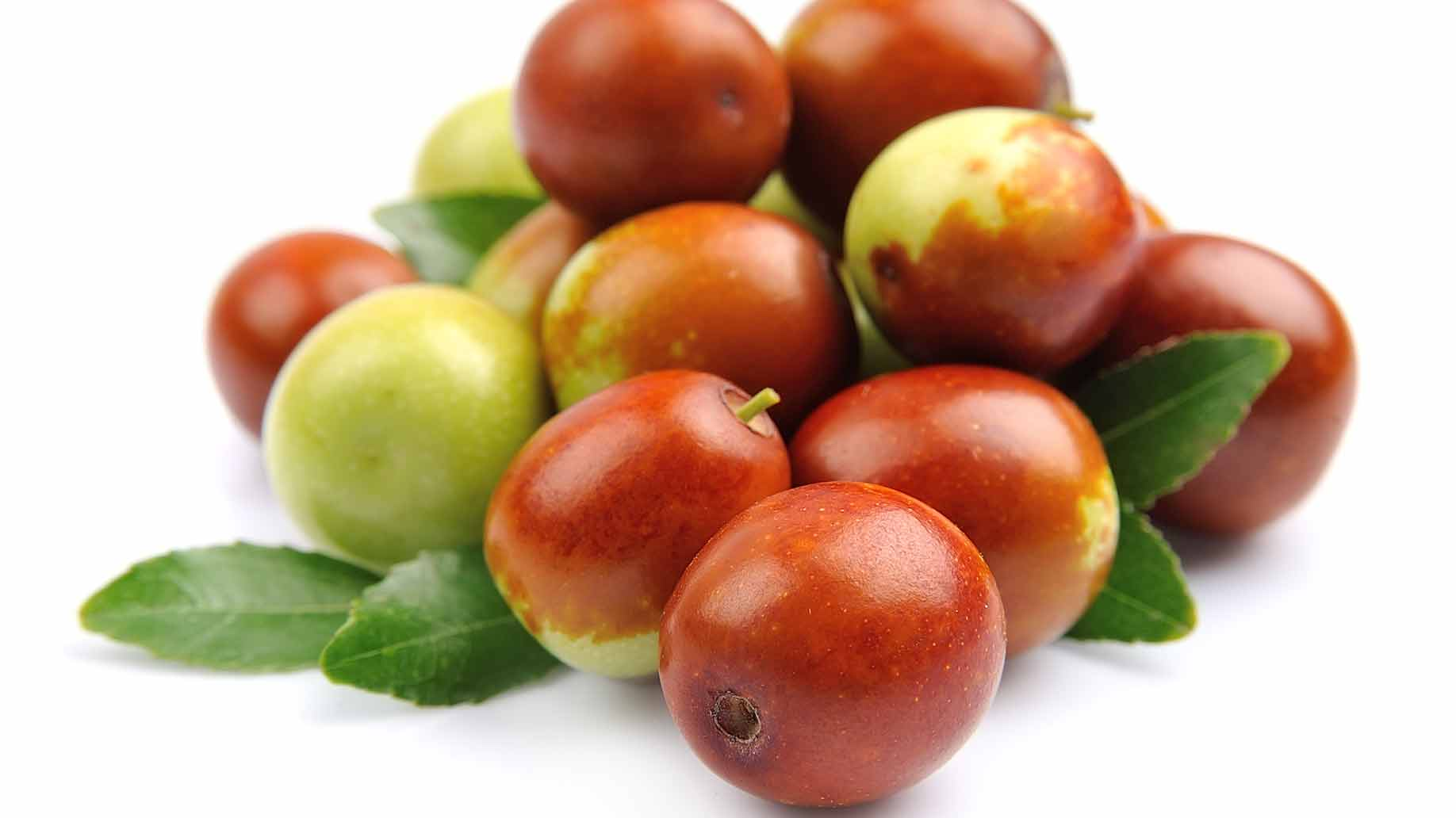 jojoba fruit oil wound healing collagen acne natural health benefits remedies