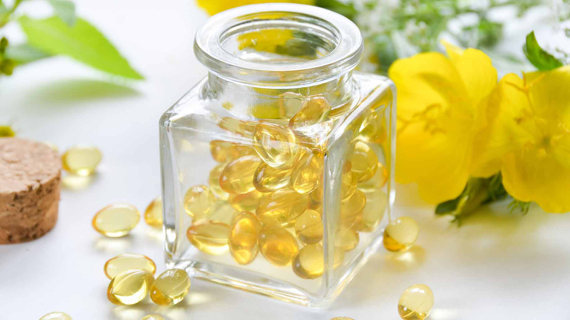 evening primrose oil yellow flower gamma linolenic acid omega 6 fatty acid anti inflammatory natural remedies