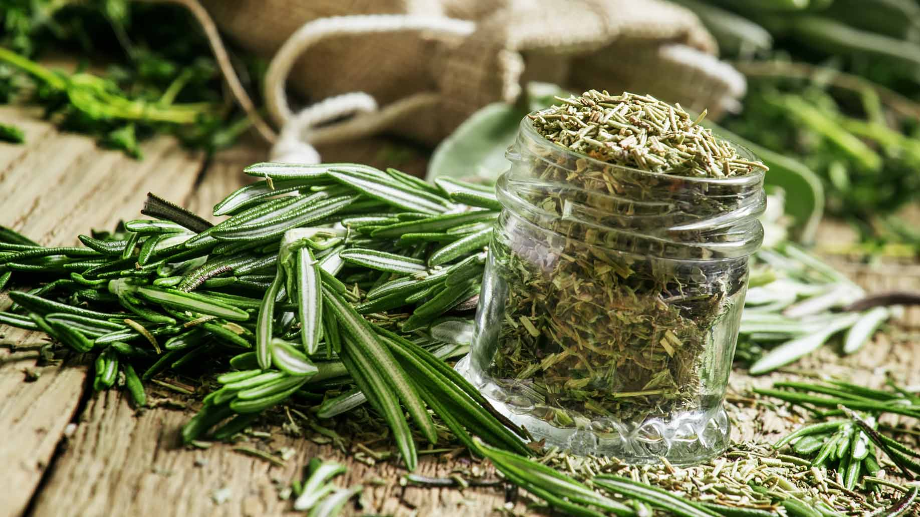 rosemary hair loss thinning balding natural remedies