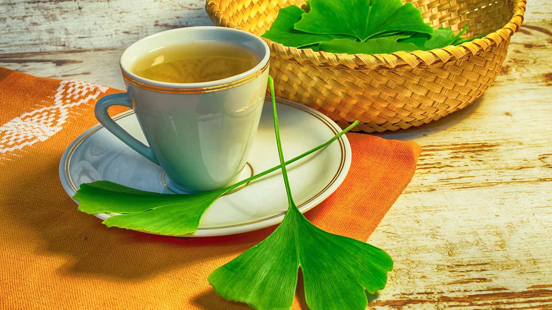 Leaky gut ginkgo biloba green leaves tea natural remedies