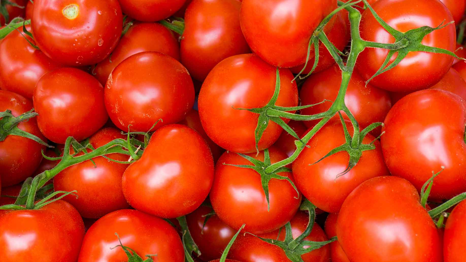 high cholesterol red ripe tomatoes natural remedies