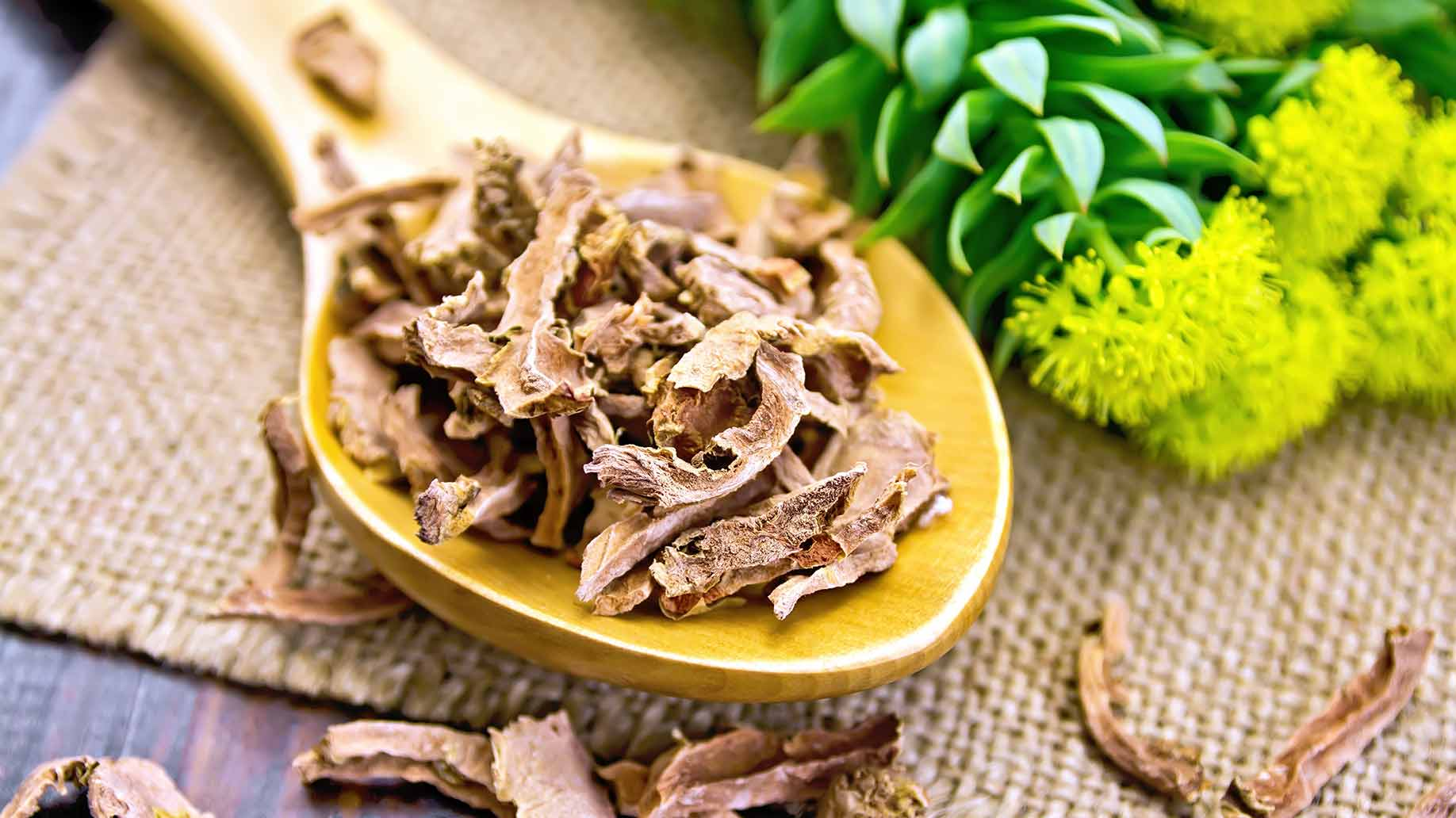 rhodiola rosea increase boost energy levels natural remedies.
