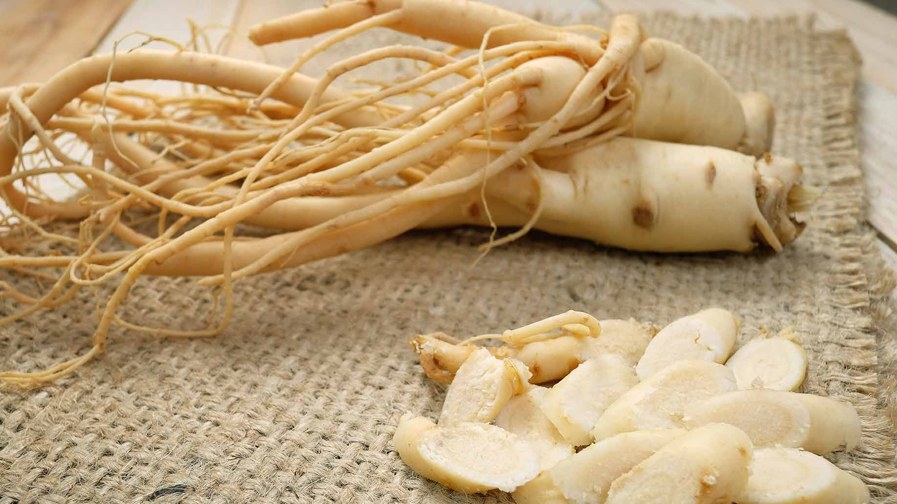 asian ginseng roots boost increase energy